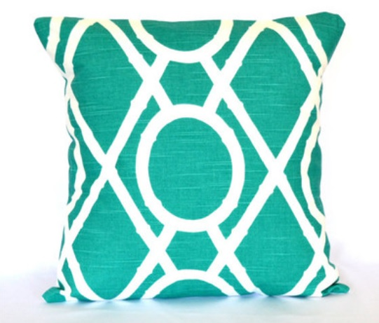 Modern Touch - Turquoise Accent Pillow $35